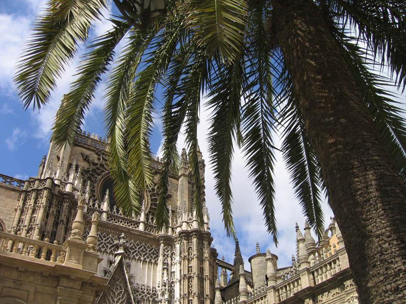 Séjour Linguistique pour seniors à Malaga